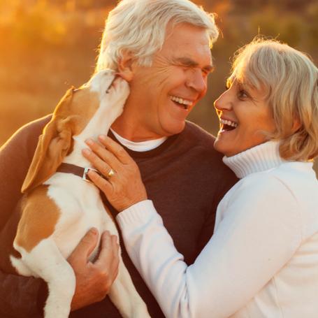 Preventative Care for Dogs - Ravenna Animal Hospital